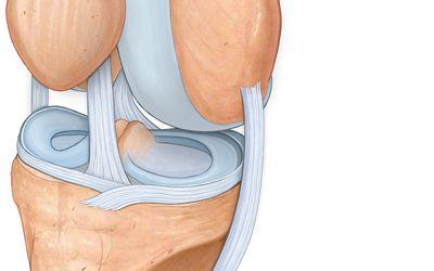 az egész test fáj a fájdalmas ízületeket súlyos fájdalom a térdpótlás után