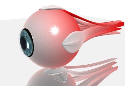 bionikus látás testnevelési órák látássérültekkel