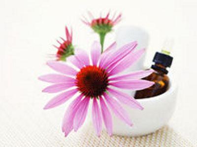 Asztma kezelése gyógynövényekkel