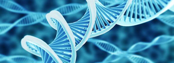 gyomorrák genetika hpv impfung módon ab 18